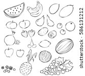 different types of fruit ... | Shutterstock .eps vector #586131212