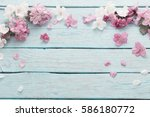 apple flowers on wooden... | Shutterstock . vector #586180772