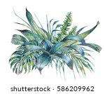 natural leaves exotic... | Shutterstock . vector #586209962