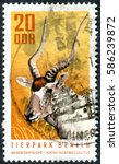 Small photo of GERMANY - CIRCA 1970: A stamp printed in Germany (GDR), shows the the animals of the Berlin Zoo - Addax (Addax nasomaculatus), circa 1970