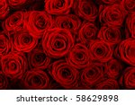 Stock photo red roses background natural texture of love 58629898
