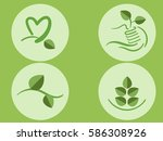 collection green leaf logo ... | Shutterstock .eps vector #586308926