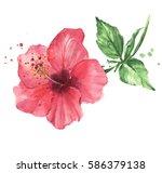 beautiful pink flower.... | Shutterstock . vector #586379138