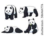 pandas clip art set | Shutterstock .eps vector #586464776