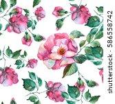roses seamless pattern.... | Shutterstock . vector #586558742