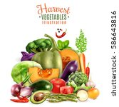 harvest of autumn vegetables... | Shutterstock .eps vector #586643816