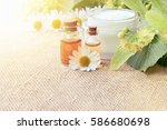 chamomile extract organic... | Shutterstock . vector #586680698