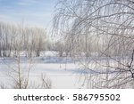 the frozen tree. in the winter... | Shutterstock . vector #586795502