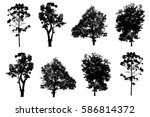 silhouette of trees isolated on ... | Shutterstock . vector #586814372