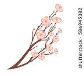 colorful close up sakura branch ... | Shutterstock .eps vector #586945382