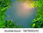 green trees and leaf greenery... | Shutterstock . vector #587000192