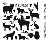 Set Of Forest Animals  Birds...