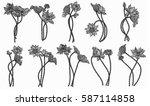 vector set of hand drawn lotus... | Shutterstock .eps vector #587114858
