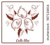 a beautiful bouquet of calla... | Shutterstock .eps vector #587126816