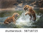 tigers play in the water | Shutterstock . vector #58718725