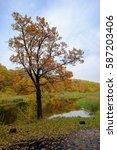 Vertical Autumn Landscape Oak...