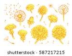 floral elements for design ... | Shutterstock .eps vector #587217215