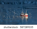 Fishing Boat And Seagulls In...