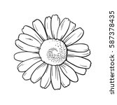 vector line art of white flower.... | Shutterstock .eps vector #587378435