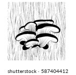 Oyster Mushrooms Grow On A Tre...