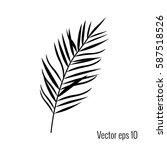 palm leaf vector illustration. | Shutterstock .eps vector #587518526