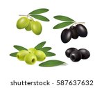 set of green and black olives... | Shutterstock .eps vector #587637632