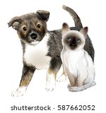 portrait of the  cute puppy and ... | Shutterstock .eps vector #587662052