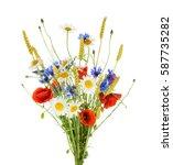 bouquet of beautiful flowers ... | Shutterstock . vector #587735282