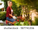 Young Woman Gardening In Summer