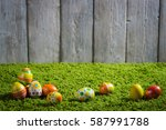 easter eggs painted on a wooden ... | Shutterstock . vector #587991788