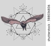 owl tattoo drawing with... | Shutterstock .eps vector #588036836