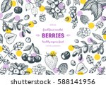 berries hand drawn  vector... | Shutterstock .eps vector #588141956