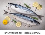 Stock photo fresh fish mackerel with salt lemon and spices on gray background cooking fish with herbs top 588165902