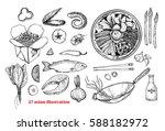 hand drawn vector illustrations ... | Shutterstock .eps vector #588182972