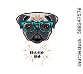 Cute Portrait Of Nerdy Pug Dog...