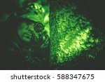 Hunting Poacher with Riffle in Night Vision Color Grading. - stock photo