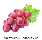 grapes isolated on white...   Shutterstock . vector #588535742