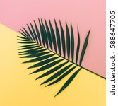 palm leaf on pink and yellow... | Shutterstock . vector #588647705