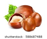 hazelnuts. whole nuts and... | Shutterstock .eps vector #588687488