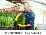 Man Gardener With Garden Tools...