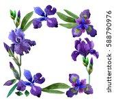 Wildflower Iris Flower Frame I...
