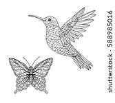 hummingbird and butterfly hand... | Shutterstock .eps vector #588985016