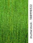 textile background | Shutterstock . vector #588998522
