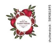 pomegranate fruit vintage... | Shutterstock .eps vector #589081895