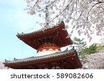 Japanese Cherry Blossom  ...