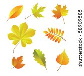 a set of autumn leaves. vector | Shutterstock .eps vector #58909585