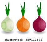 set fresh vegetable onion...