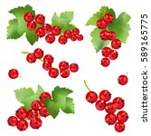 red currant berries. set of... | Shutterstock .eps vector #589165775