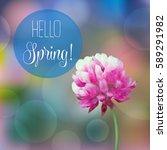 red clover flower on summer... | Shutterstock .eps vector #589291982
