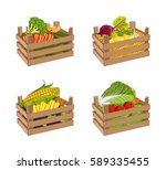 wooden box full of vegetable... | Shutterstock .eps vector #589335455